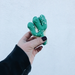 A little coffee shop we shot at had these handmade cactus macaroons.@Axiom